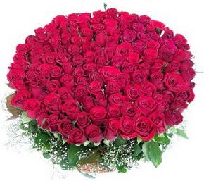 Malatya çiçek satışı  100 adet kırmızı gülden görsel buket