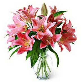 3 dal kazablanka görsel vazosu  Malatya anneler günü çiçek yolla