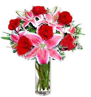 Malatya çiçekçi mağazası  1 dal cazablanca ve 6 kırmızı gül çiçeği