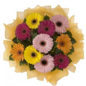 Malatya ucuz çiçek gönder  11 adet karışık gerbera çiçeği buketi