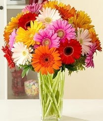 Malatya İnternetten çiçek siparişi  15 adet gerbera çiçek vazosu