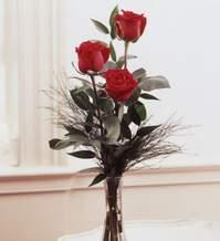 Malatya uluslararası çiçek gönderme  Vazoda 3 adet güzel gül