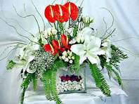 Malatya çiçek gönderme sitemiz güvenlidir  Anthurim Kazablanka  gül