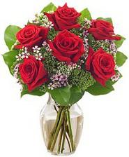 Kız arkadaşıma hediye 6 kırmızı gül  Malatya anneler günü çiçek yolla