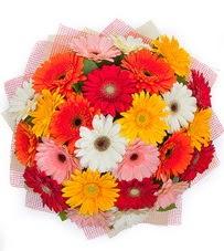 15 adet renkli gerbera buketi  Malatya çiçekçi telefonları