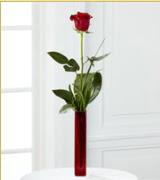 Vazo içerisinde 1 adet kırmızı gül  Malatya anneler günü çiçek yolla