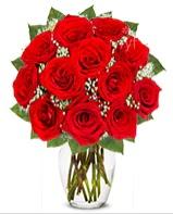 12 adet vazoda kıpkırmızı gül  Malatya çiçek servisi , çiçekçi adresleri