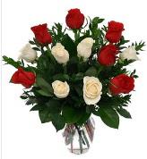 Vazo içerisinde 6 kırmızı 6 beyaz gül  Malatya online çiçek gönderme sipariş