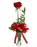 vazo içerisinde 1 adet kırmızı gül  Malatya internetten çiçek satışı