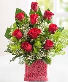 Cam içerisinde 9 adet kırmızı gül  Malatya uluslararası çiçek gönderme