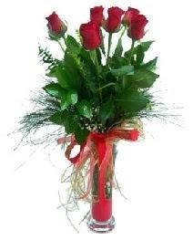 vazo içerisinde 5 kırmızı gül  Malatya çiçek gönderme