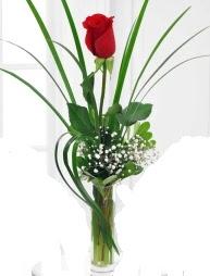 Cam içerisinde 1 kırmızı gül  Malatya hediye çiçek yolla