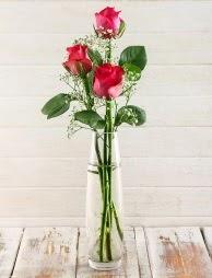 Cam içerisinde 3 kırmızı gül  Malatya çiçekçiler