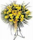 Malatya çiçekçi telefonları  Sari kazablanka Ferforje