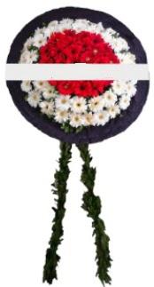 mozele çiçeği  Malatya online çiçekçi , çiçek siparişi