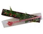 Malatya online çiçek gönderme sipariş  3 adet gül.kutu yaldizlidir.
