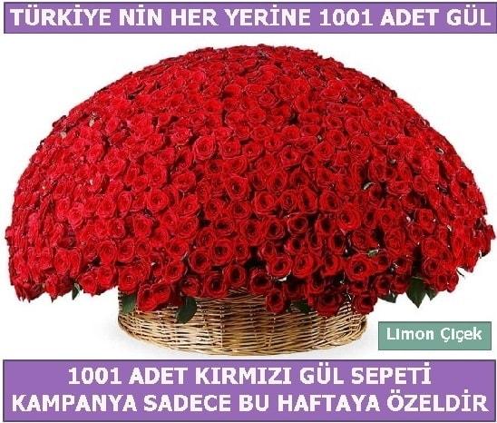 1001 Adet kırmızı gül Bu haftaya özel  Malatya ucuz çiçek gönder