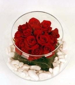 Cam fanusta 11 adet kırmızı gül  Malatya çiçek siparişi sitesi