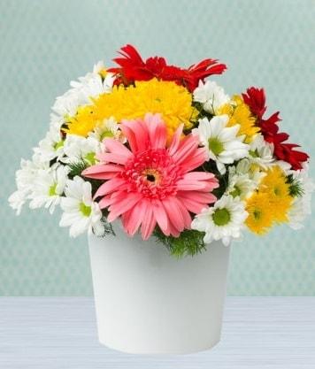 Seramik Vazoda Gelbera ve Papatya  Malatya çiçek siparişi sitesi