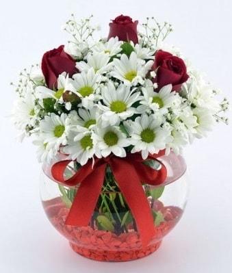 Fanusta 3 Gül ve Papatya  Malatya uluslararası çiçek gönderme
