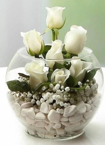 Beyaz Mutluluk 9 beyaz gül fanusta  Malatya cicekciler , cicek siparisi