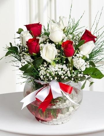 Aşk Küresi  5 beyaz 5 kırmızı gül fanusta  Malatya uluslararası çiçek gönderme