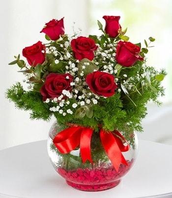 fanus Vazoda 7 Gül  Malatya internetten çiçek siparişi