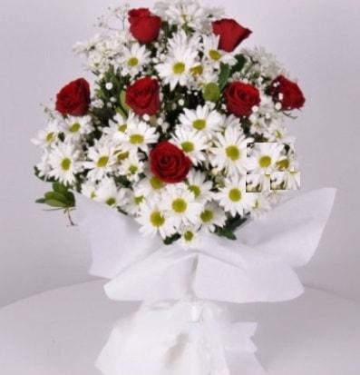 7 adet kırmızı gül ve papatyalar krizantem  Malatya uluslararası çiçek gönderme