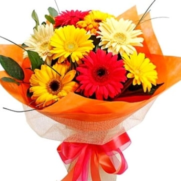 9 adet karışık gerbera buketi  Malatya internetten çiçek siparişi