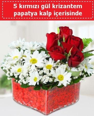 mika kalp içerisinde 5 kırmızı gül papatya  Malatya çiçek siparişi sitesi