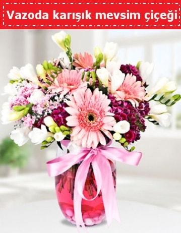Vazoda karışık mevsim çiçeği  Malatya internetten çiçek siparişi