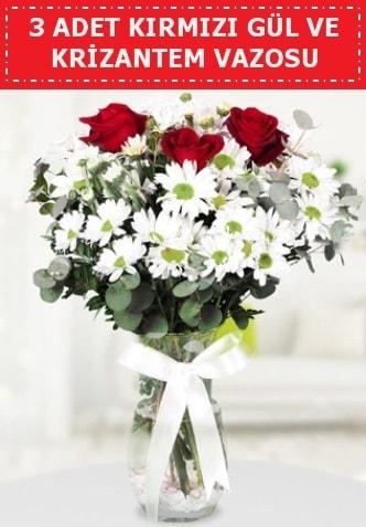 3 kırmızı gül ve camda krizantem çiçekleri  Malatya çiçek siparişi sitesi