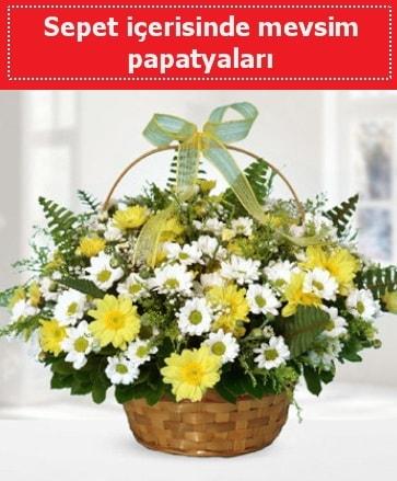 Sepet içerisinde mevsim papatyaları  Malatya çiçek siparişi vermek