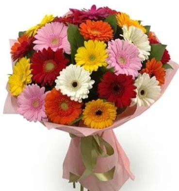 Karışık büyük boy gerbera çiçek buketi  Malatya çiçekçiler